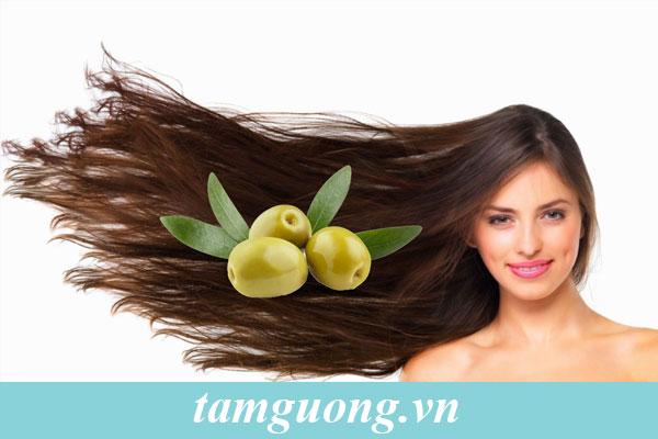 Olive từ lâu đẫ được coi là bí quyết làm đẹp của phụ nữ châu Âu.