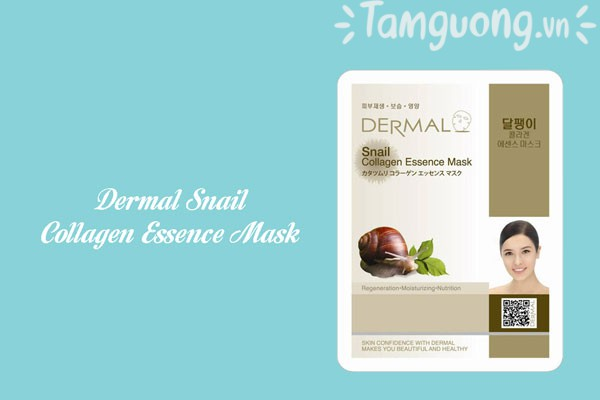 Mặt nạ Dermal ốc sên -  Dermal Snail Collagen Essence Mask