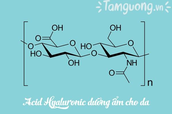 Thành phần chính của các loại kem dưỡng ẩm cho da dầu mụn