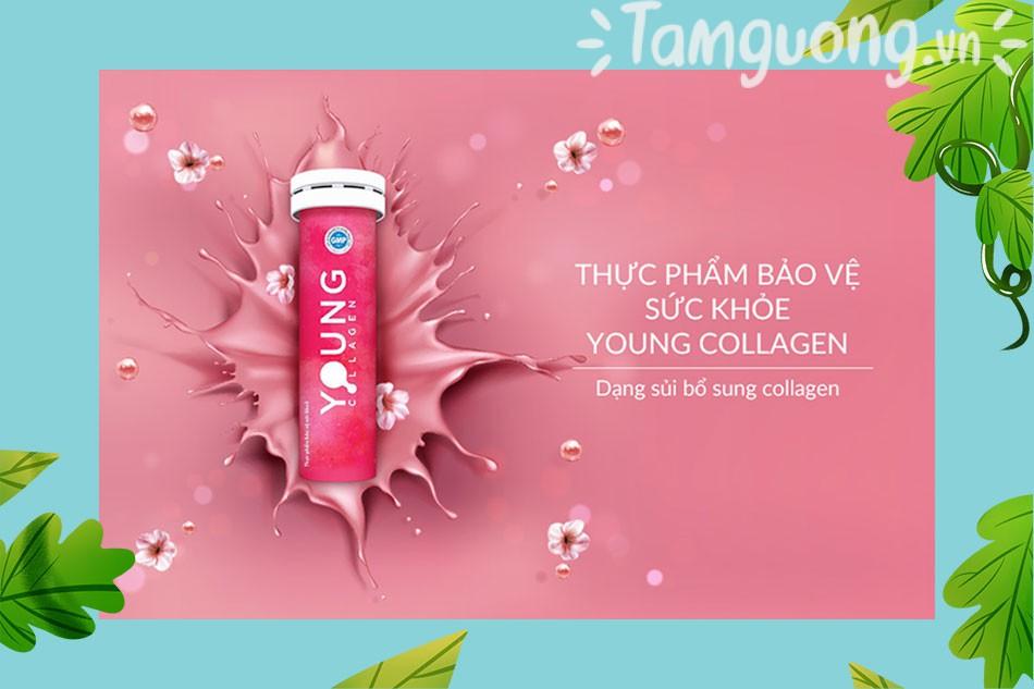 Young Collagen được nhiều chị em phụ nữ tin tưởng và sử dụng