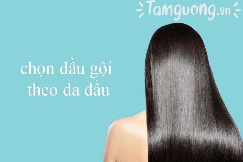 Chọn dầu gội trị rụng tóc theo da đầu