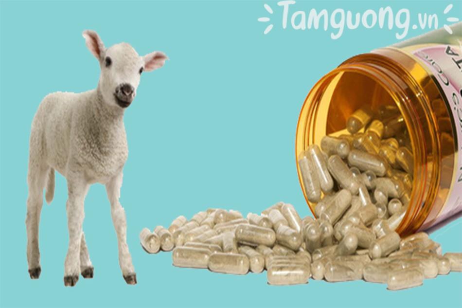 Serum trị nám nhau thai cừu