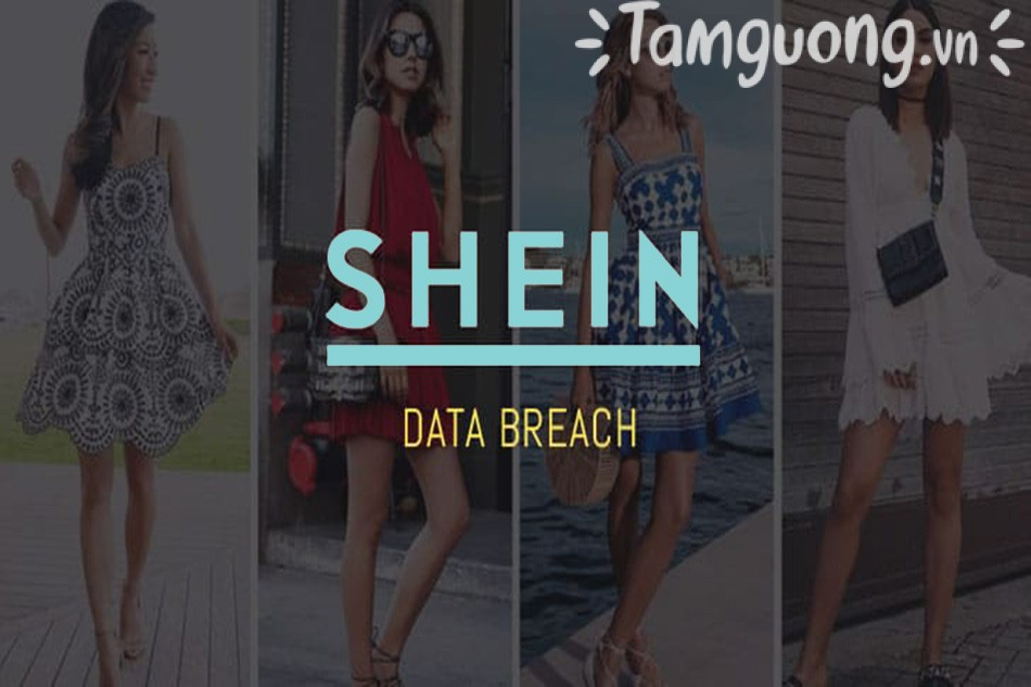 Shein Vietnam