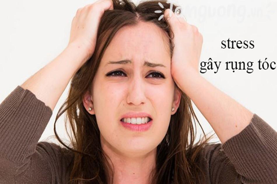 Tại sao cần dùng dầu gội trị rụng tóc?