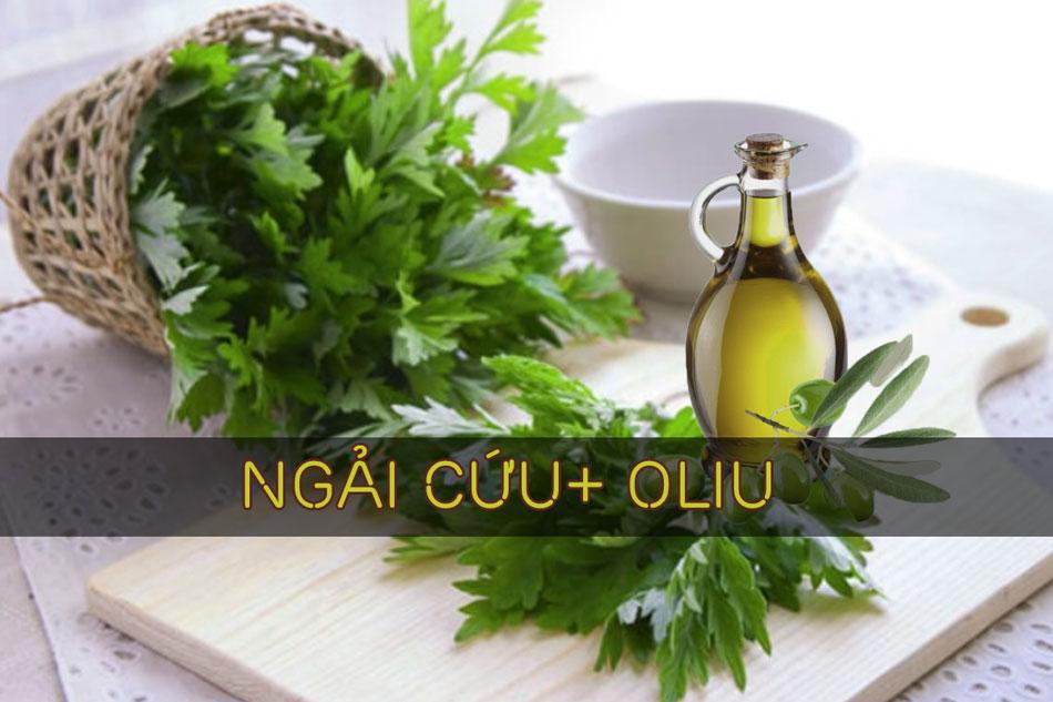 Ngải cứu kết hợp oliu