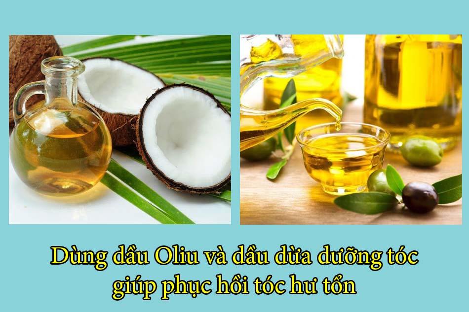 Dùng dầu Oliu và dầu dừa dưỡng tóc, phục hồi tóc hư tổn