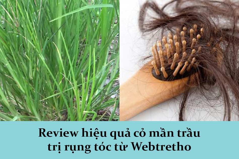 Review hiệu quả cỏ mần trầu trị rụng tóc từ Webtretho