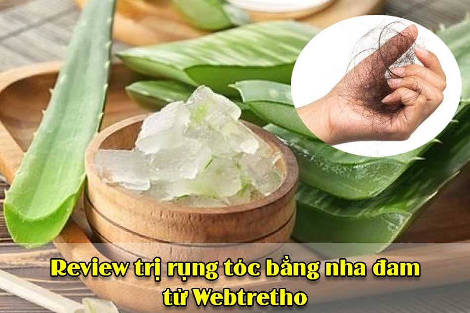 Review trị rụng tóc bằng nha đam từ Webtretho