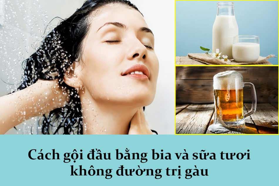 Cách gội đầu bằng bia và sữa tươi không đường trị gàu