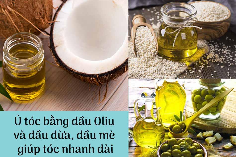 Ủ tóc bằng dầu oliu và dầu dừa, dầu mè giúp tóc nhanh dài
