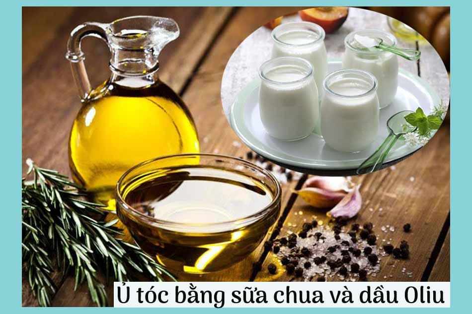 Cách ủ tóc bằng sữa chua và dầu Oliu hạn chế rụng tóc