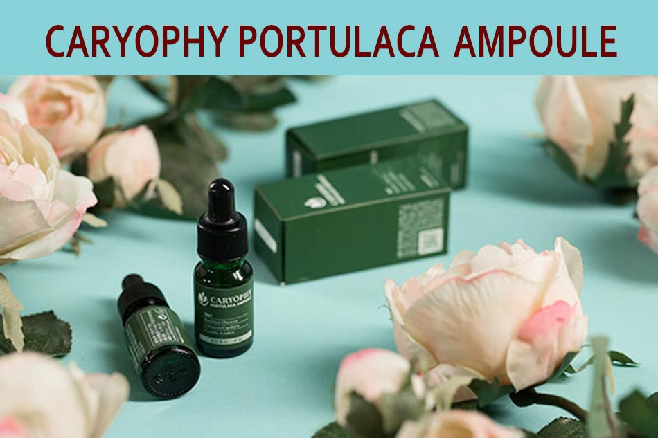 Caryophy Portulaca Ampoule