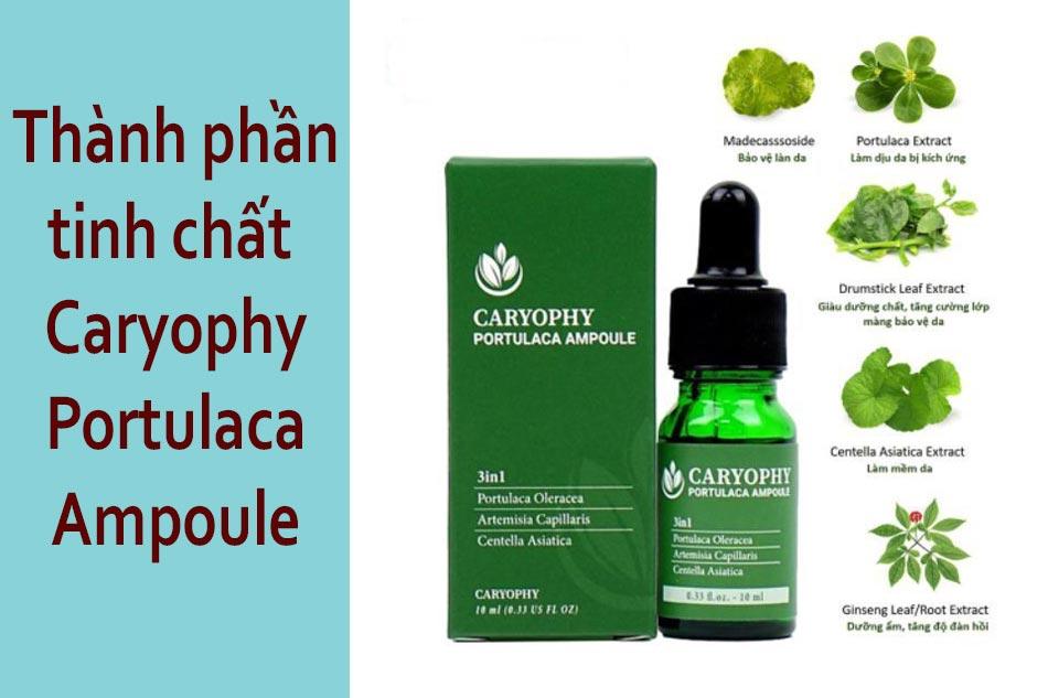 Thành phần tinh chất serum trị mụn Caryophy Portulaca Ampoule