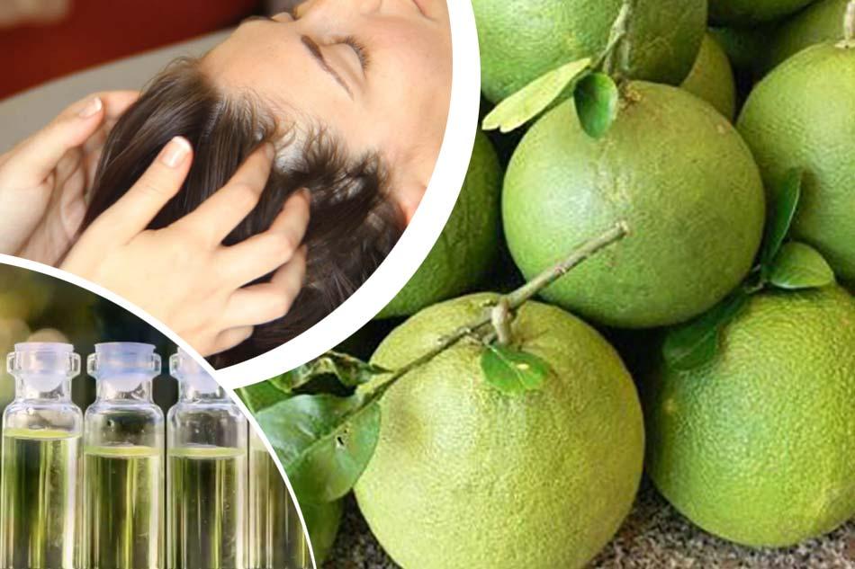 Massage da đầu với tinh dầu bưởi trị rụng tóc