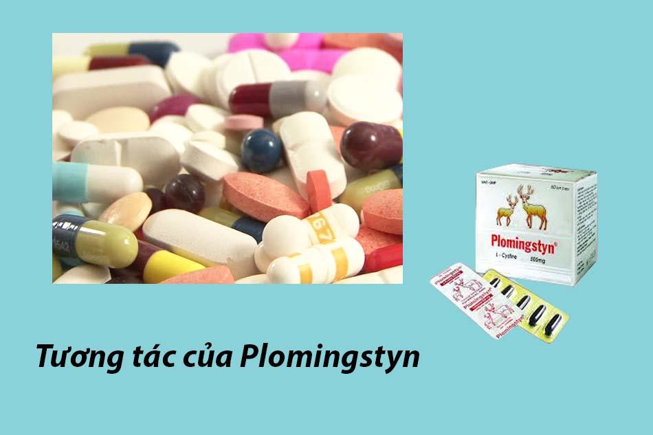 Tương tác của Plomingstyn