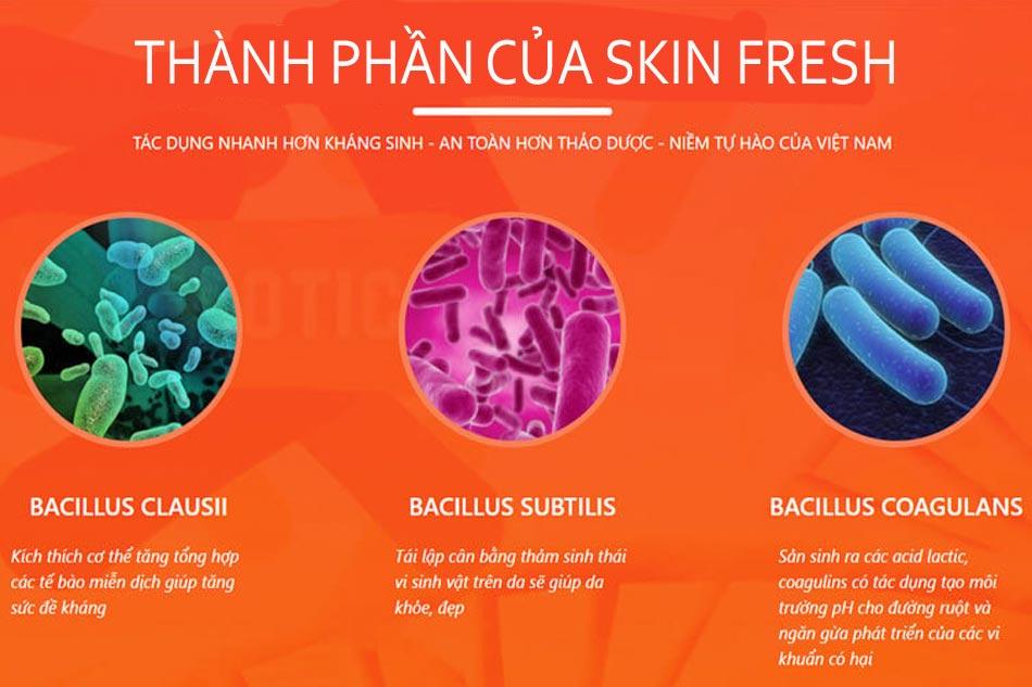 Thành phần của Skin Fresh