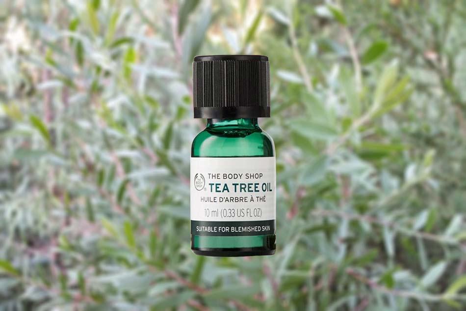 Tinh dầu tràm trà trị mụn, kháng khuẩn Tea Tree Oil - The Body Shop